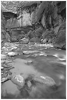 Rock alcove and Virgin River, the Narrows. Zion National Park, Utah, USA. (black and white)