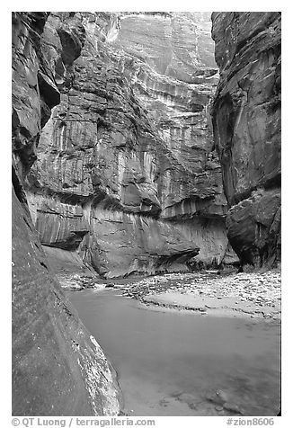 Riverbend in the Narrows. Zion National Park (black and white)