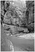 Riverbend in the Narrows. Zion National Park ( black and white)