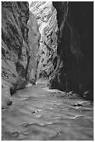 Virgin River flowing between  rock walls of Wall Street, the Narrows. Zion National Park, Utah, USA. (black and white)