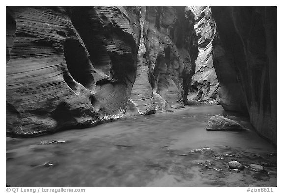 Dark canyon at Wall Street, the Narrows. Zion National Park (black and white)