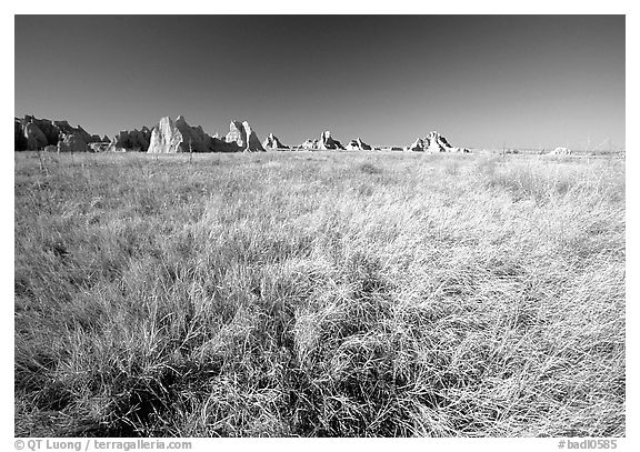 Tall grass prairie near Cedar Pass. Badlands National Park (black and white)