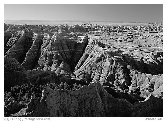 View from Pinacles overlook, sunrise. Badlands National Park (black and white)