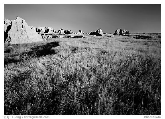 Tall grass prairie and badlands near Cedar Pass. Badlands National Park (black and white)