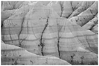 Paleosols fossil soils mixed with Brule Formation. Badlands National Park, South Dakota, USA. (black and white)