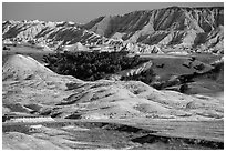 Badlands and Juniper forest. Badlands National Park ( black and white)