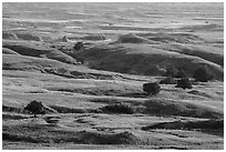 Rolling hills, Badlands Wilderness. Badlands National Park ( black and white)