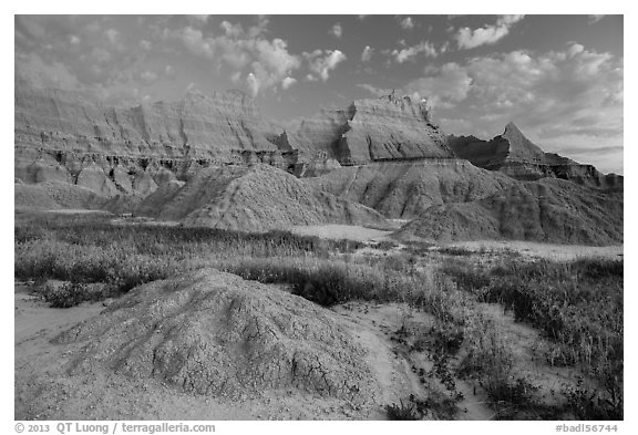 Grasses, cracked soil, and sharp peaks at dawn. Badlands National Park (black and white)
