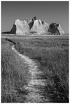 Trail winding in prairie next to butte. Badlands National Park, South Dakota, USA. (black and white)