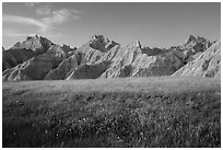 Grasses with summer flowers and buttes at sunset. Badlands National Park, South Dakota, USA. (black and white)