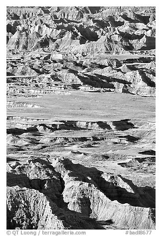 Badlands mixed with prairie from Pinacles overlook, morning. Badlands National Park (black and white)
