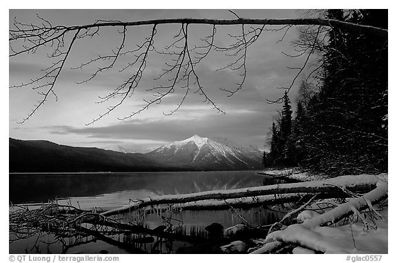 Shore of lake McDonald in winter. Glacier National Park (black and white)