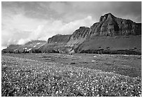 Garden wall from Logan pass. Glacier National Park, Montana, USA. (black and white)