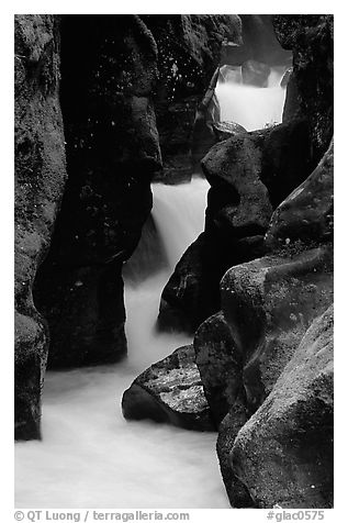 Stream cascading in narrow gorge, Avalanche creek. Glacier National Park (black and white)