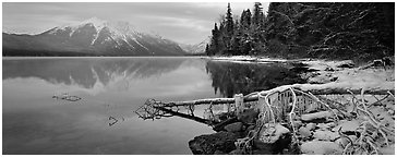 Lake, snowy shore, and mountains in winter. Glacier National Park (Panoramic black and white)