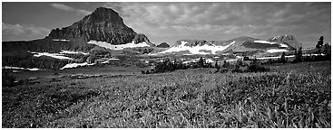 Alpine landscape with wildflower meadows and peak. Glacier National Park (Panoramic black and white)
