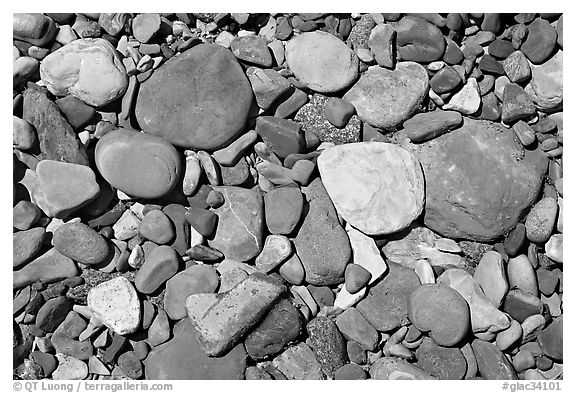 Colorful pebbles in a stream. Glacier National Park (black and white)