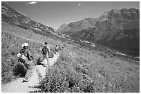 Group hiking on the Grinnell Glacier trail. Glacier National Park, Montana, USA. (black and white)