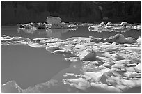 Icebergs and reflections in Upper Grinnell Lake. Glacier National Park ( black and white)