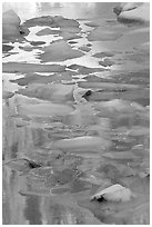 Blue icebergs floating on reflections of rock wall, late afternoon. Glacier National Park ( black and white)