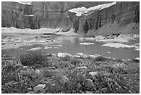 Wildflowers, Upper Grinnell Lake, Salamander Falls and Glacier. Glacier National Park, Montana, USA. (black and white)