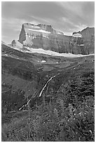 Wildflowers, Grinnell Falls, Mt Gould, and Garden Wall, sunset. Glacier National Park ( black and white)
