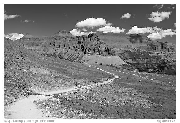 Trail near Logan Pass. Glacier National Park (black and white)