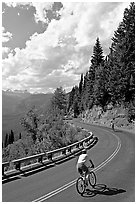 Bicyclists riding down Going-to-the-Sun road. Glacier National Park ( black and white)