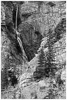 Apikuni Falls in autumn. Glacier National Park ( black and white)