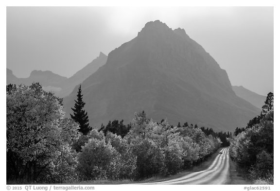 Road, forest in autum foliage, and park, Many Glacier. Glacier National Park (black and white)