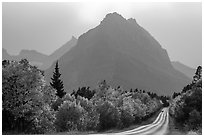 Road, forest in autum foliage, and park, Many Glacier. Glacier National Park ( black and white)