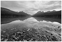 Bowman Lake. Glacier National Park ( black and white)