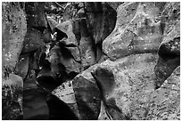 Sculptured rocks, Avalanche Creek. Glacier National Park ( black and white)