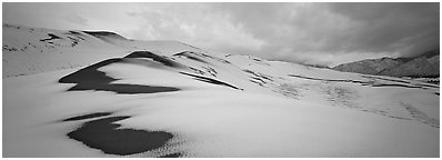 Dune field covered by snow. Great Sand Dunes National Park (Panoramic black and white)
