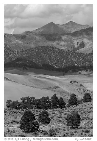 Sangre de Cristo mountains with aspen in fall foliage above dunes. Great Sand Dunes National Park and Preserve (black and white)