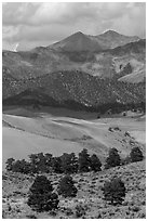 Sangre de Cristo mountains with aspen in fall foliage above dunes. Great Sand Dunes National Park, Colorado, USA. (black and white)