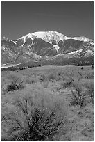 Desert-like sagebrush and snowy Sangre de Cristo Mountains. Great Sand Dunes National Park, Colorado, USA. (black and white)