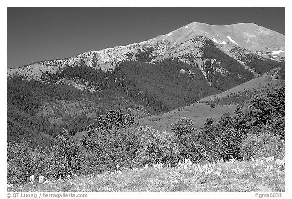Sangre de Cristo Mountains near Medano Pass in summer. Great Sand Dunes National Park and Preserve (black and white)