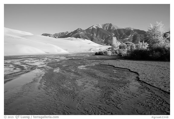 Medano Creek flowing, dunes, and trees in autumn foliage. Great Sand Dunes National Park and Preserve (black and white)