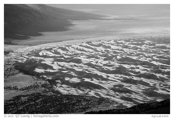 Dune field from above. Great Sand Dunes National Park and Preserve (black and white)