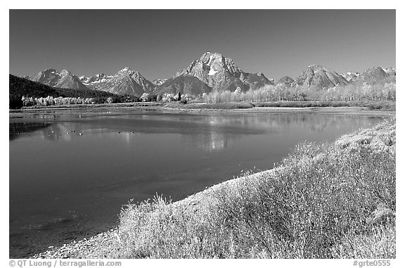 Fall colors and reflections of Mt Moran and Teton range in Oxbow bend. Grand Teton National Park (black and white)