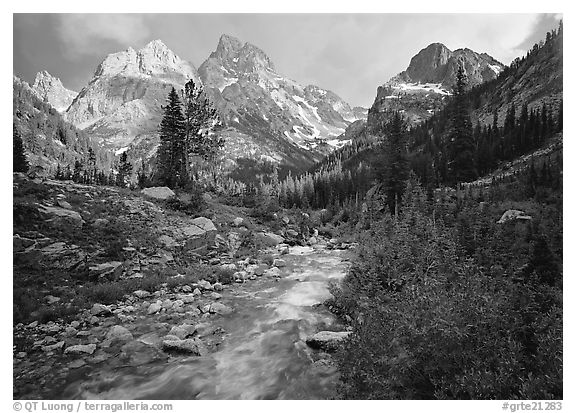 Valley, Cascade creek and Teton range with storm light. Grand Teton National Park (black and white)