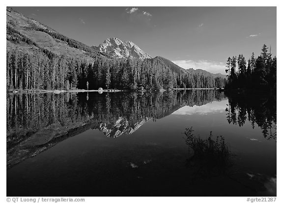 Leigh Lake with Mt Moran reflections, morning. Grand Teton National Park (black and white)