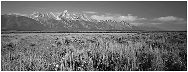 Sagebrush-covered flat and mountain range. Grand Teton National Park (Panoramic black and white)