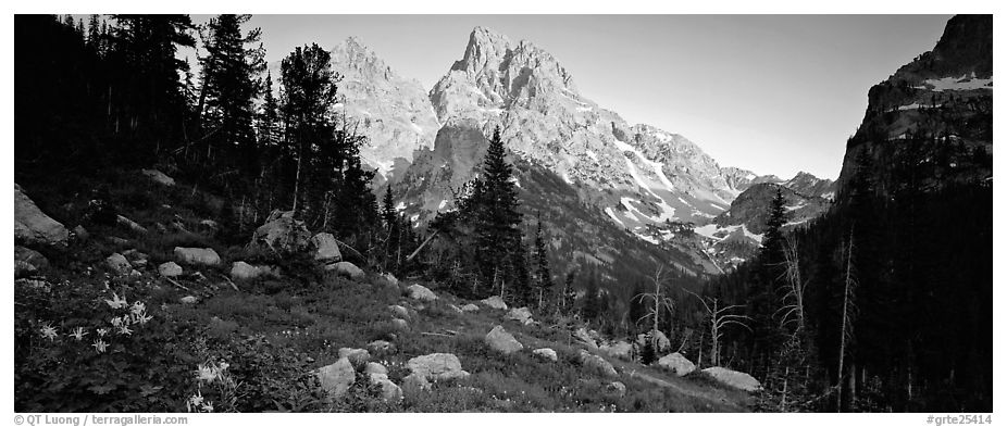 Rugged peaks lit by last light. Grand Teton National Park (black and white)