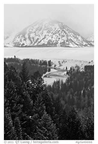 Trees with dusting of snow and Snake River. Grand Teton National Park (black and white)
