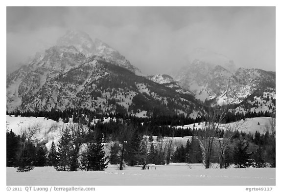 Below Teton range in winter. Grand Teton National Park (black and white)