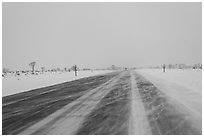Road with snowdrift in winter. Grand Teton National Park ( black and white)