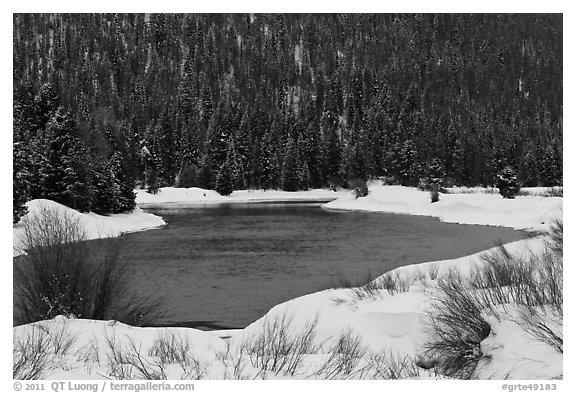 Snake River and forest covered hill in winter. Grand Teton National Park (black and white)