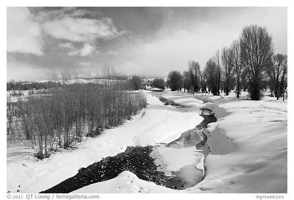 Snowscape with stream. Grand Teton National Park (black and white)